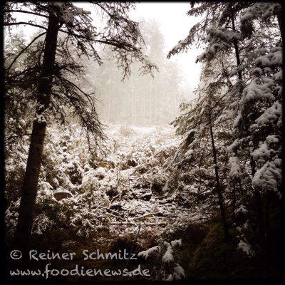 Schneelandschaft_Kitzbuehel_IMG_1248